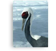 Winter Crane Canvas Print