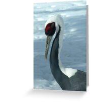 Winter Crane Greeting Card