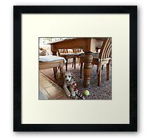 Does Anyone Want To Play? Framed Print