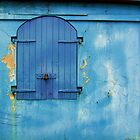 Shuttered Blue by Debbi Granruth
