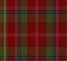 00420 Golden Broom #2 Tartan  by Detnecs2013