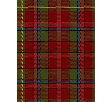 00420 Golden Broom #2 Tartan  Photographic Print