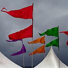 Flag poles by Adriano Carrideo
