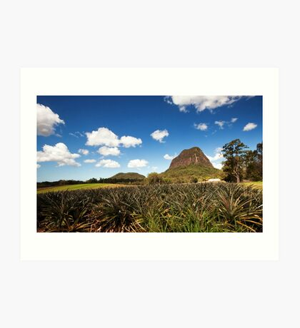 Mt Tibrogargan - Sunshine Coast Qld Art Print