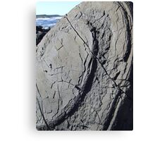 Pancakes on the rocks Canvas Print