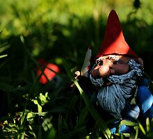 Attack of the Killer Gnome by StrangEnQuirkY