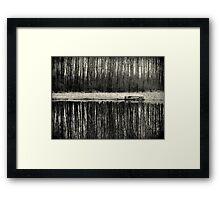 Isolation in BW Framed Print