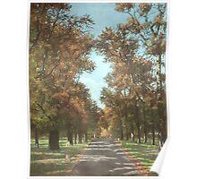 Southampton Palmerston park Poster