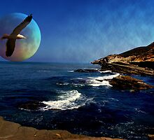 Blue Moon by Linda Storm