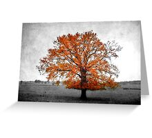 A Tree in Autumn Greeting Card