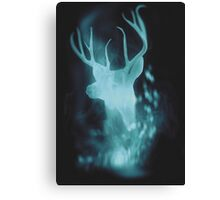 Stag Spirit Guide Canvas Print