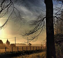 Mist At Sunrise - Wiltshire by Nick Bland