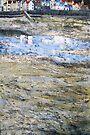 Low Tide, Staithes by Sue Nichol