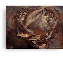 FADED BEAUTY Canvas Print