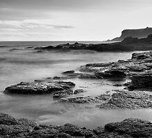 Flinders Back-Beach by Jim Worrall