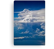 Mushrooms in the Sky Canvas Print