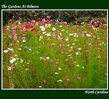 The Gardens At Bilmore ~ Part One by artisandelimage