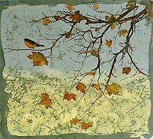 Robin In Maple by carolyndoe