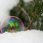 Bubble In the Snow by Lynn  Gibbons