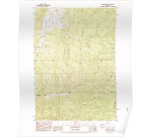 USGS Topo Map Oregon Prairie Peak 281170 1984 24000 Poster