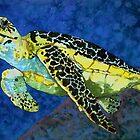 Sea Turtle by Rhonda  Anderson