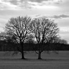 The Two Trees by Gretchen Dunham
