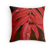 Autumn Meadowhawk on Staghorn Sumac Throw Pillow