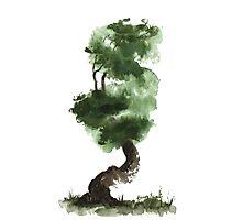 Little Zen Tree 148 Photographic Print