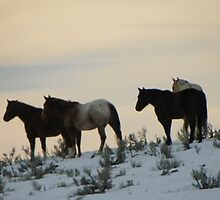Greeting The Dawn by Betty  Town Duncan
