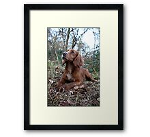 Waiting at the end of the day Framed Print