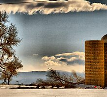Snow Across the Prairies by Barb Miller