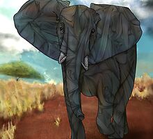 African Elephant by Ben Geiger