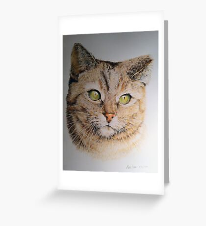 Cat coloured pencil drawing Greeting Card