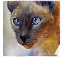Watercolor Siamese Cat painting #2 Svetlana Novikova Poster