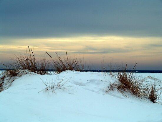 Winter Beach by BarbL