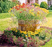 Rainbarrel Garden by David Lloyd Glover