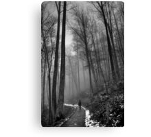 Black and White... Canvas Print