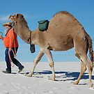 just walkin my camel. by Amanda Huggins