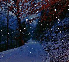 Snowing on Trace Branch by Ann Eldridge