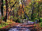 Autumn Footbridge by Marcia Rubin