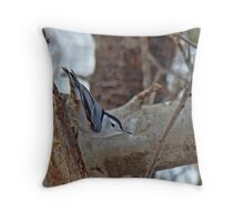 White-Breasted Nuthatch (Sitta carolinensis) Throw Pillow