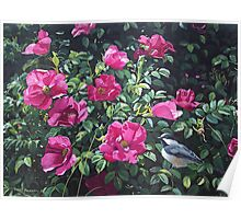 """""""Among The Roses--Blackcapped Chickadee"""" Poster"""