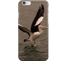 Pelican Launch iPhone Case/Skin