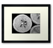 Lemon Texture Framed Print