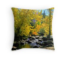 """Signs of Fall"" Throw Pillow"