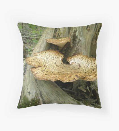 Dryad's Saddle Bracket Fungi - Polyporus Squamosus Throw Pillow