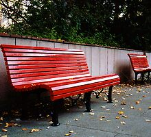 Red Benches by aquinnahimages