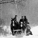 Snowfall (B&W) by Sean McConnery