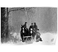 Snowfall (B&W) Poster