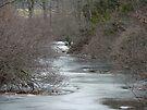 Winter at Deep Creek - Green Lane, PA by MotherNature